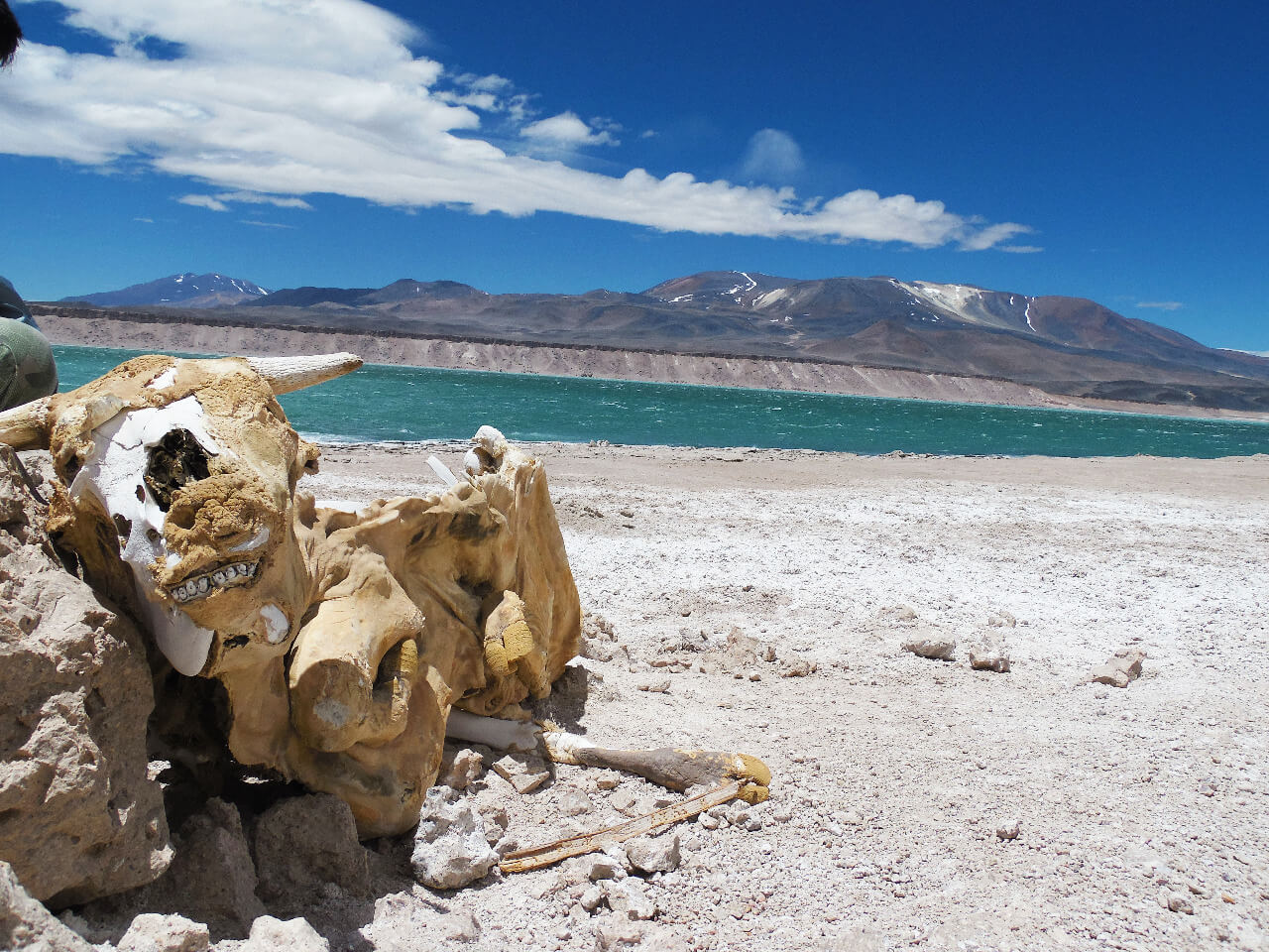 hiking en chile