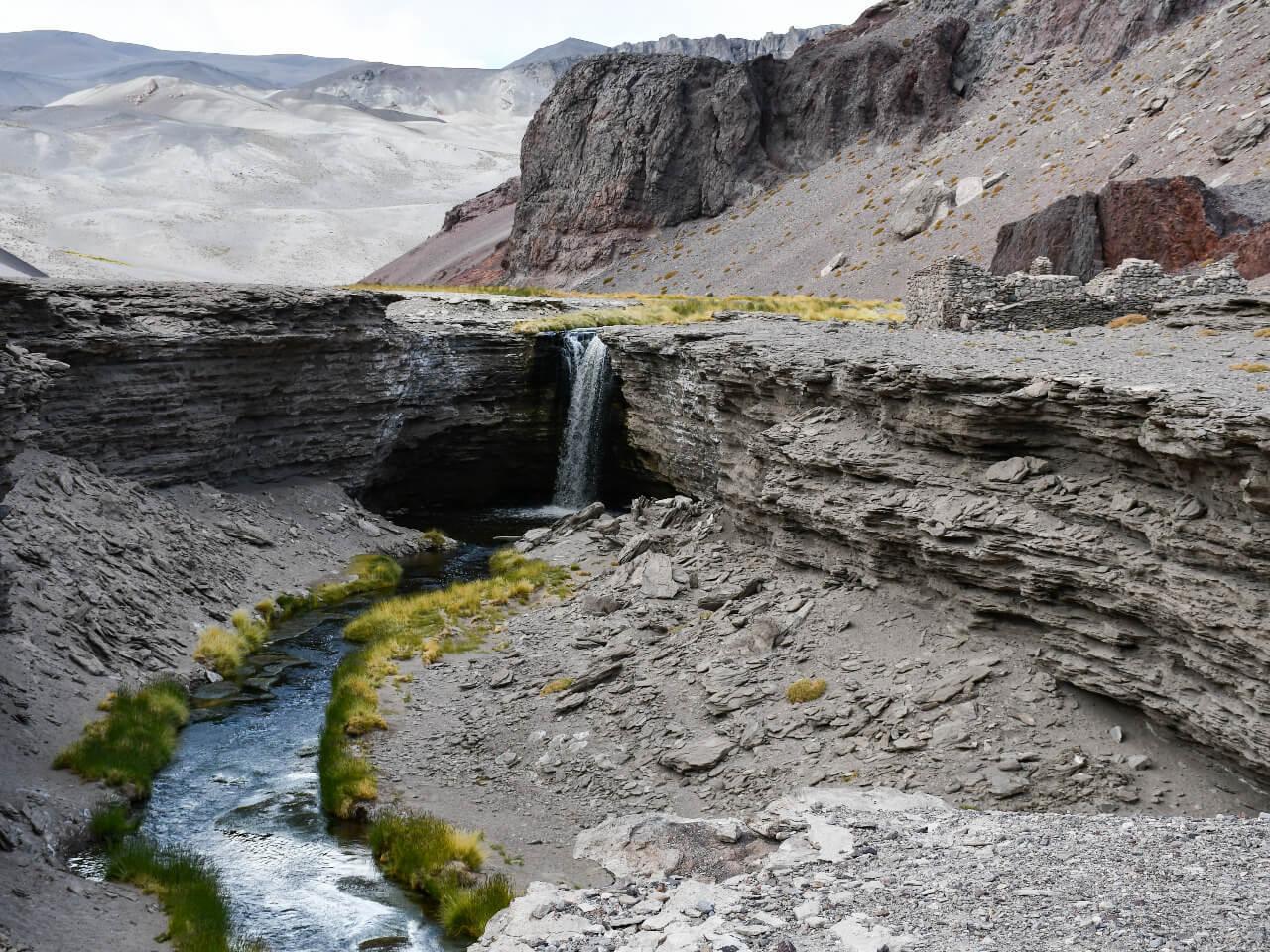 patagonia en verde